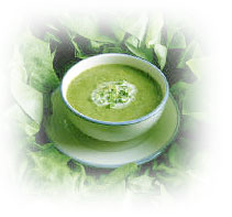 Why Does The Cabbage Soup Diet Work