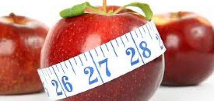diet plan videos